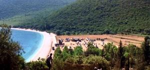 Corellis Mandoline - Camp